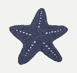 Example of a Starfish icon