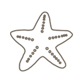 Example of a starfish etching