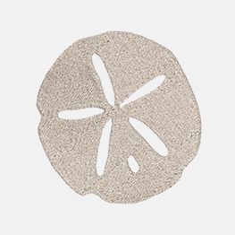 Example of a sand dollar icon-it