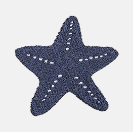 Example of a starfish icon-it