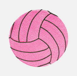 Ejemplo de una Pelota de Voleibol